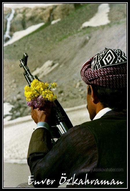 Silah, susin ve beybun (FOTO YORUM) 1