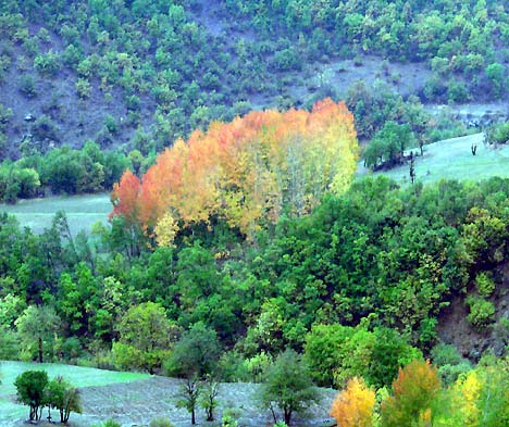 Şemdinli'nin doğal güzellikleri 30