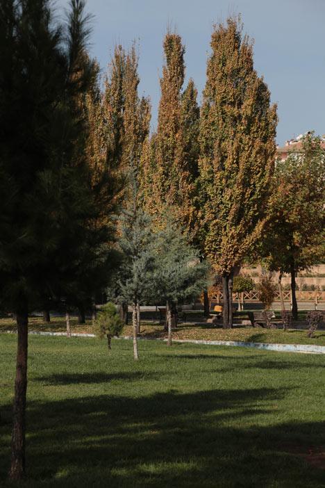 Hazan mevsimi Diyarbakır'da ayrı bir güzel 1