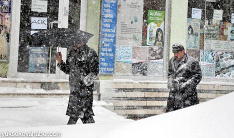 Kar yağışı Yüksekova'yı esir aldı 23