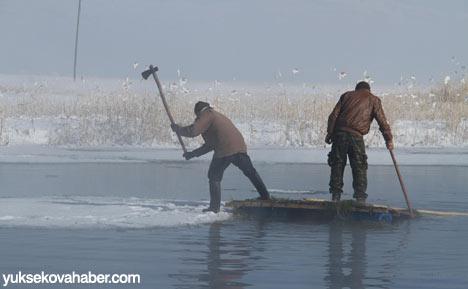 Buz kırıp hayvanlarını besliyorlar 3