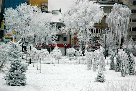 Erzurum'dan kar manzaraları 4