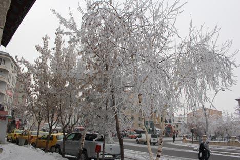 Ağrı'dan kar manzaraları 10