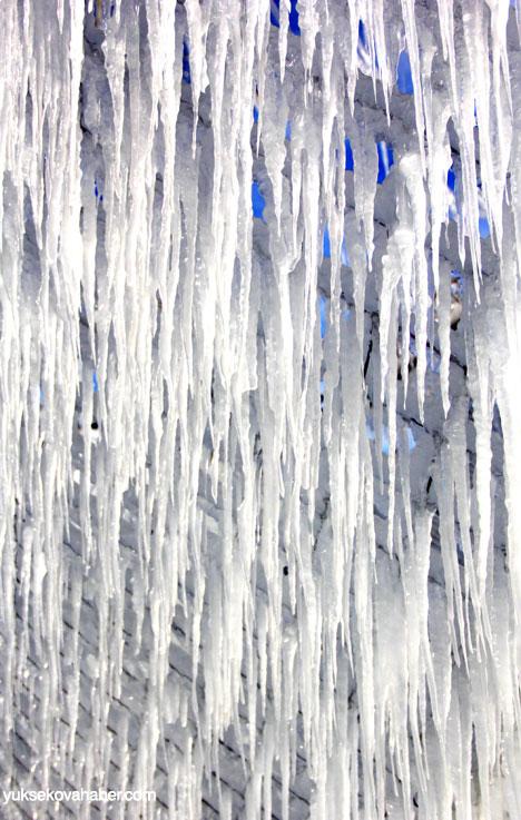 Erzurum'da Sibirya soğukları buzlu sanata dönüştü 5