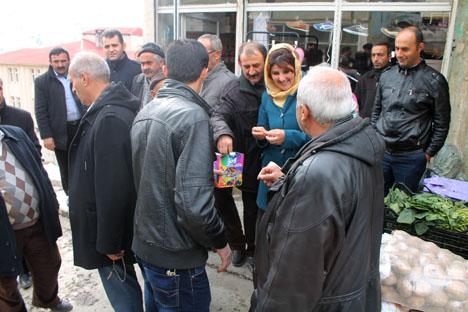BDP Seçim çalışmalarına devam ediyor 1