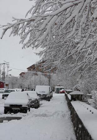 Erzurum'da kar yağışı 10