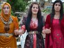 Yüksekova Düğünleri (17-18 Mayıs 2014)