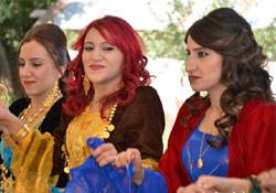 Hakkari Düğünleri (02 - 03 Ağustos 2014)