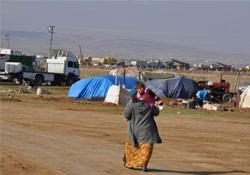 Kobanê'de direnişin 84. günü