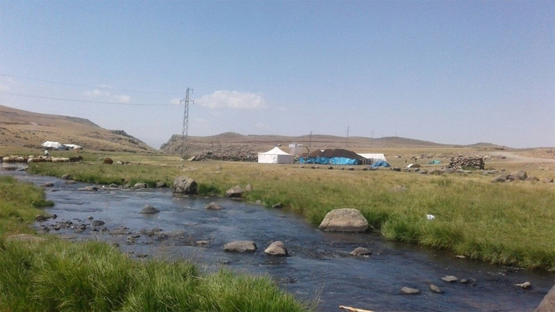 Ağrı'da göçerlerin zorlu yayla hayatı 1