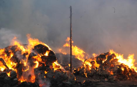 Bataklı köyünde 50 bin bağ ot kül oldu 24