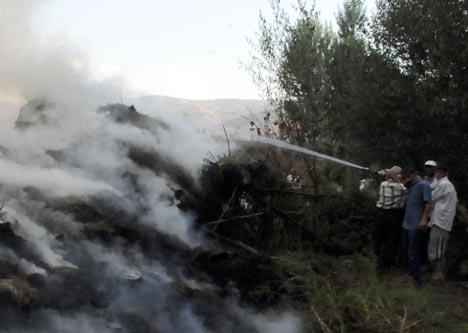 Bataklı köyünde 50 bin bağ ot kül oldu 35