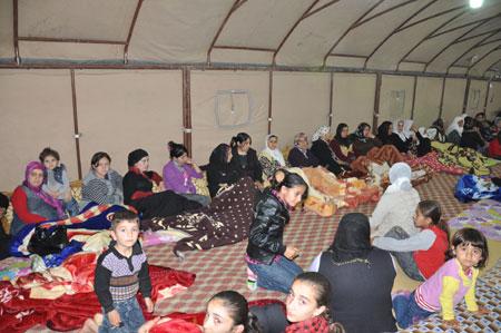 'Çözüm çadırı' etkinlikleri sürüyor 16