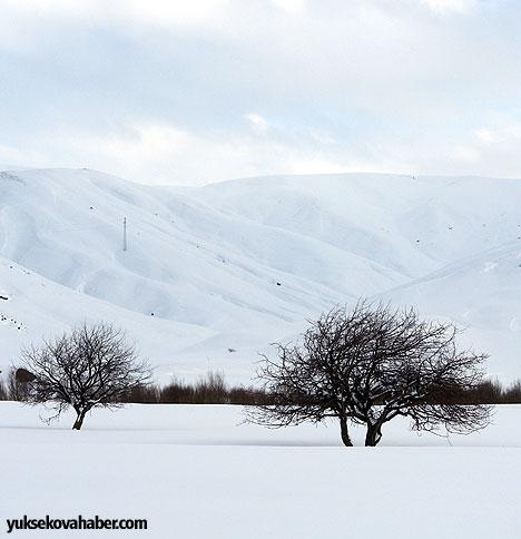 Yüksekova'da her mevsim farklı güzel 8