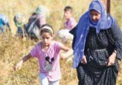 Rojava'da dul kadınlara yardım eli