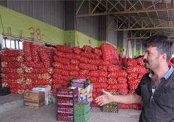 Urfa'da Sebze Fiyatları Düştü, Meyve Fiyatları Uçtu