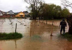 Balkanlarda sel felaketi: 45 kişi öldü