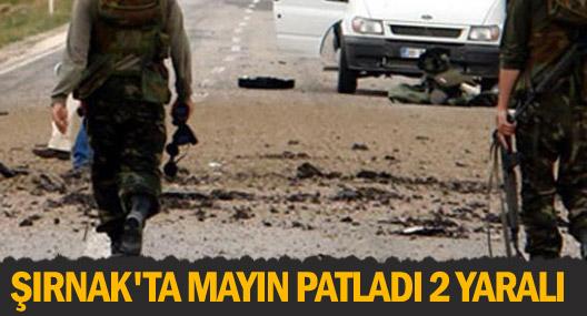 Şırnak'ta mayın patladı 2 yaralı