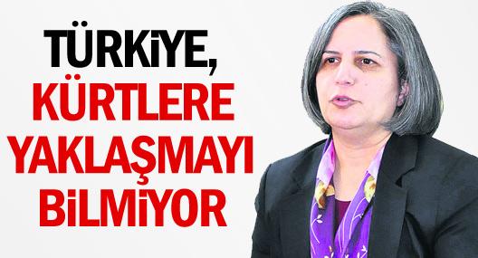 Türkiye, Kürtlere yaklaşmayı bilmiyor
