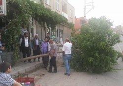Ergani'de Şiddetli Fırtına