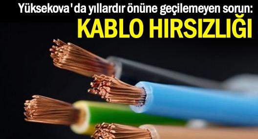 Yüksekova'da önüne geçilemeyen sorun: Kablo hırsızlığı