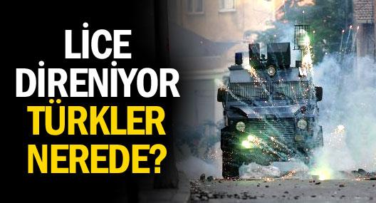 Lice direniyor Türkler nerede?
