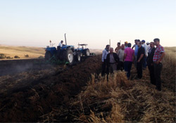 Silvan'da Buğday Tarlası Yandı