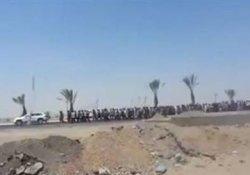 Tikrit geri alındı