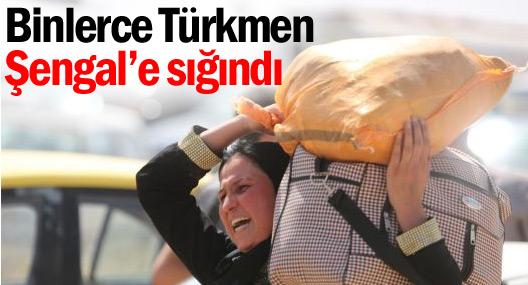 Telafer'den kaçan binlerce Türkmen Şengal'e sığındı