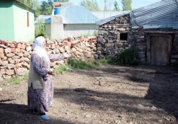 Köyden 20 Büyükbaş Çalıp Kaçtılar