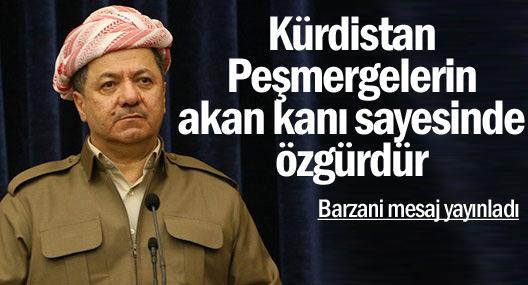 'Kürdistan, Peşmergelerin akan kanı sayesinde özgürdür'