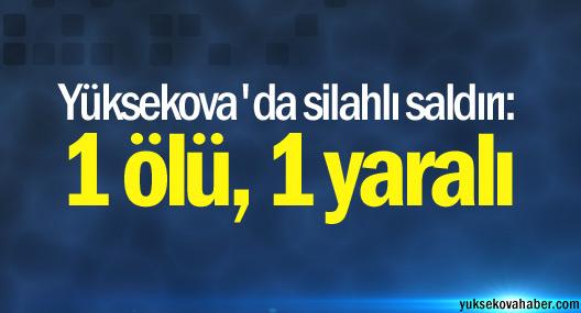 Yüksekova'da silahlı saldırı: 1 ölü, 1 yaralı
