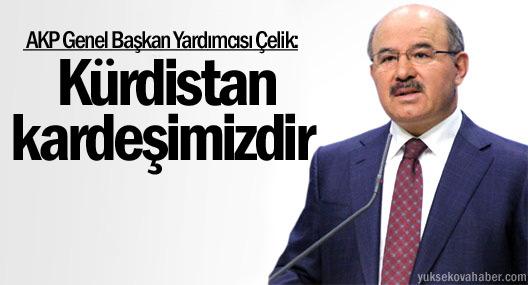 Hüseyin Çelik: Kürdistan Kardeşimizdir