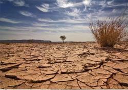 İklimsel değişimler 7 bin yıllık Atacama mumyalarını çürütüyor