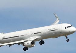 5 aylık bebek uçakta hayatını kaybetti