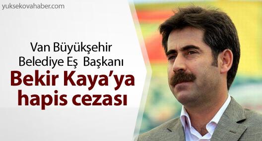 Van Büyükşehir Belediye Eş Başkanı Bekir Kaya'ya hapis cezası