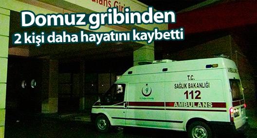 Türkiye domuz gribine iki kurban daha verdi