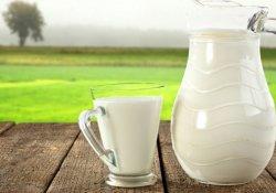 Süt üretimi arttı!