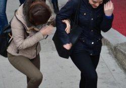 Bursa'da lodos