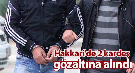 Hakkari'de 2 kardeş gözaltına alındı