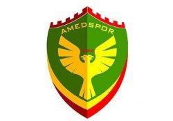 Amed Spor'a Cizre ve Sur cezası