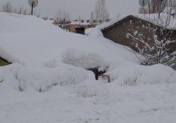Bitlis'te 103 köy yolu ulaşıma kapalı