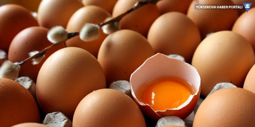 Yumurta üreticilerinden uyarı: 1 aylık stoğumuz kaldı