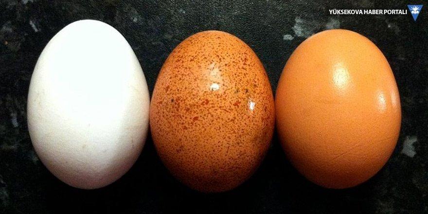 'Yumurta stoklanabilen bir ürün değil'