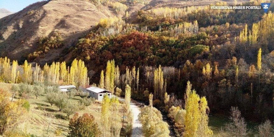 Van Bahçesaray'da sonbahar güzelliği