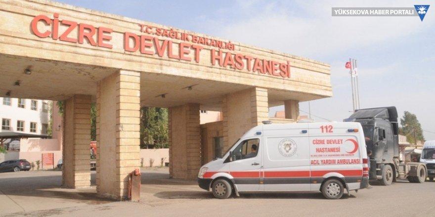 Cizre'de aracın çarptığı kadın hayatını kaybetti