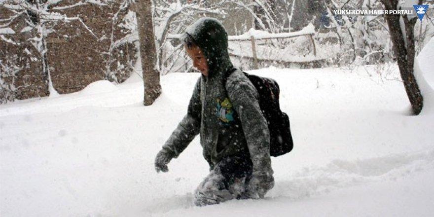 Hakkari ve Yüksekova'daki okullara kar tatili