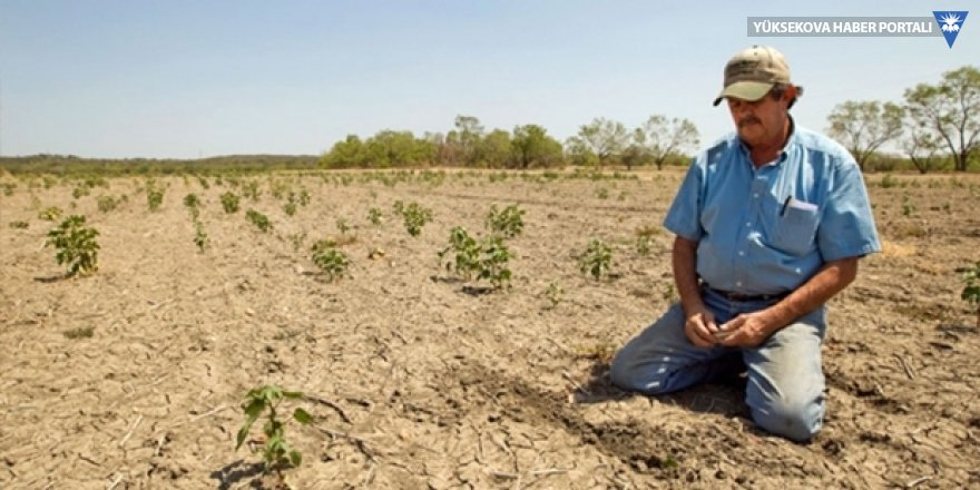 Fakıbaba: Kuraklıktan zarar gören sigortalı çiftçilerin zararları karşılanacak