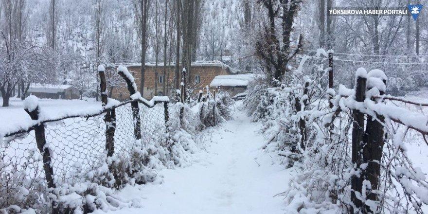 Beytüşşebap ve Uludere'de kar yağışı