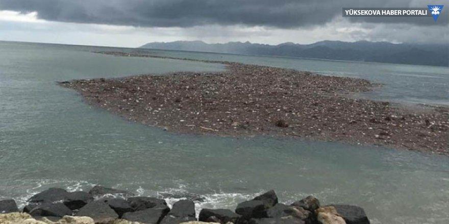 Tarım Bakanı Pakdemirli: 700 ton fındık zarar gördü